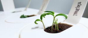 Smart gadgets for plants